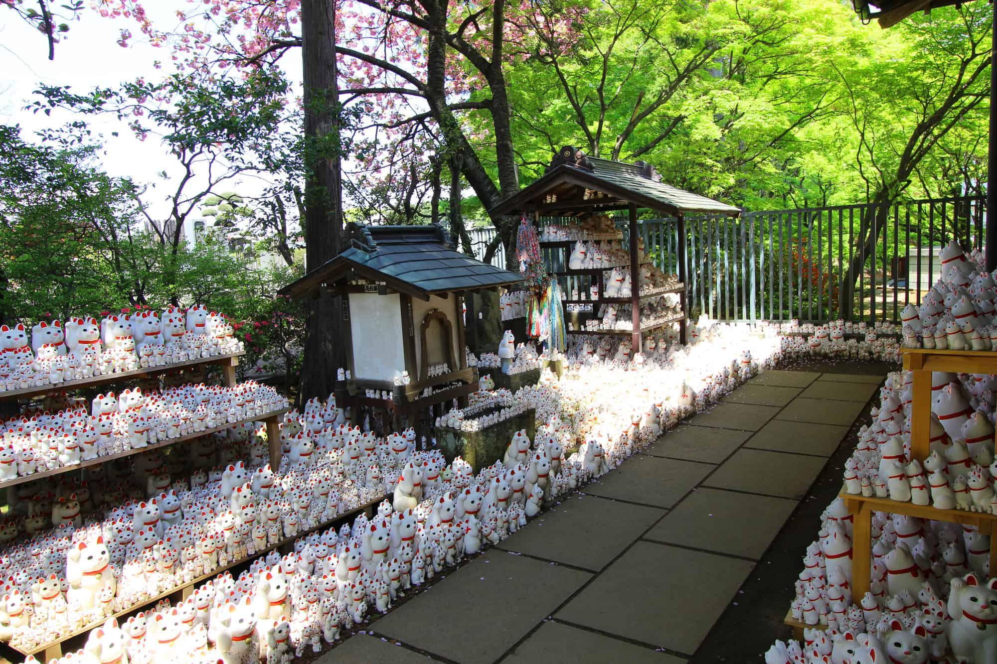 วัดโกโทคุจิ (Gotokuji Temple)
