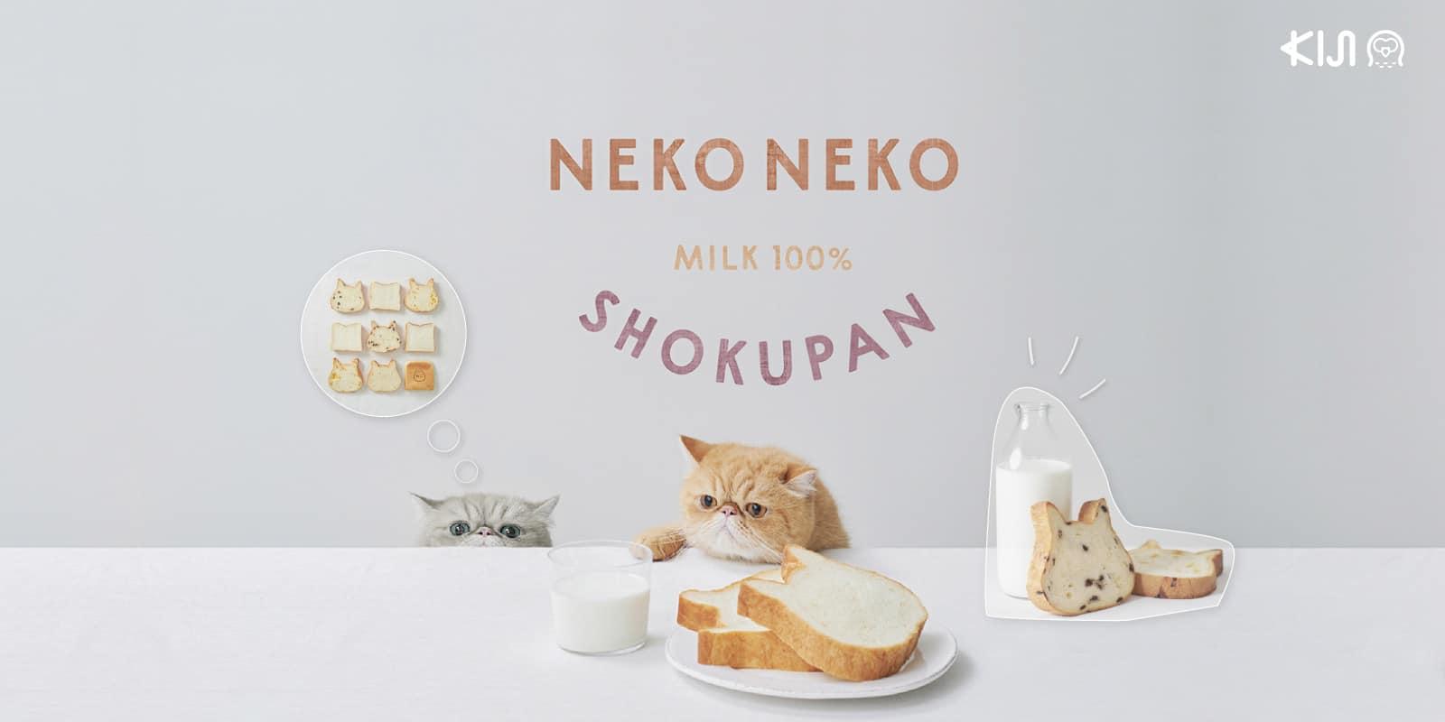 Neko Neko Shokupan สาขาฟุกุโอกะ (Fukuoka)