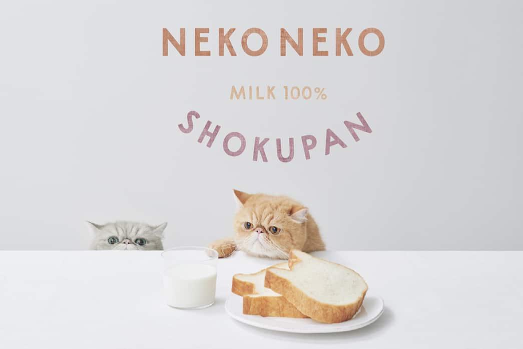 Neko Neko Shokupan in Fukuoka