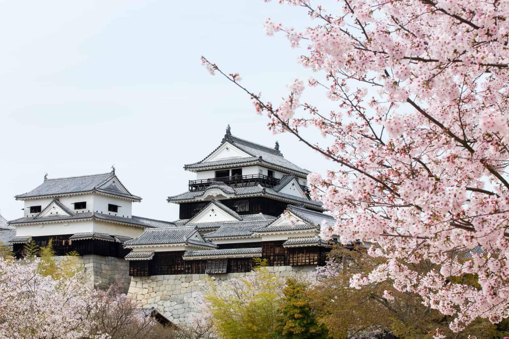 ปราสาทมัตสึยามะ (Matsuyama Castle)