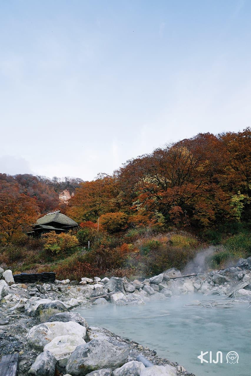 เที่ยว นิวโตออนเซ็น (Nyuto Onsen) - Kuroyu Onsen