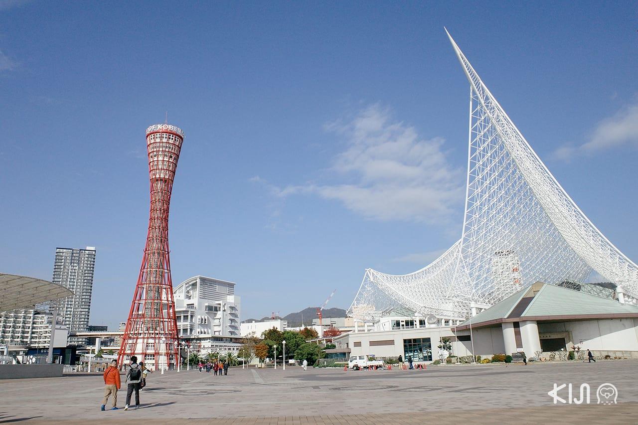 Kobe City Loop Bus : Kobe Port Tower