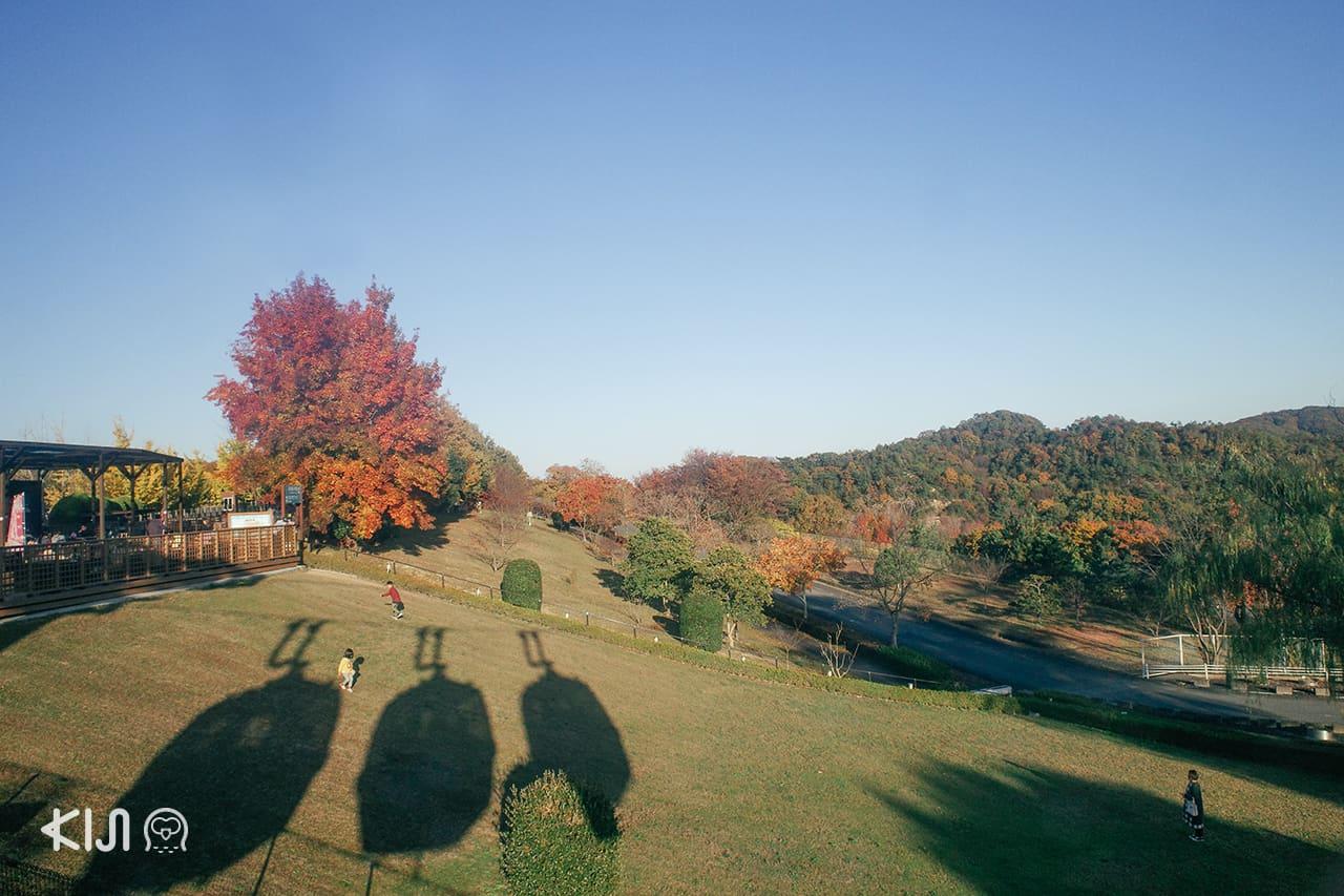 บรรยากาศภายใน Himeji Central Park