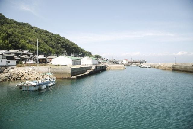 สถานที่ที่มี แมว ใน ญี่ปุ่น : เกาะซานากิจิมะ จังหวัดคางาวะ (Sanagijima, Kagawa)