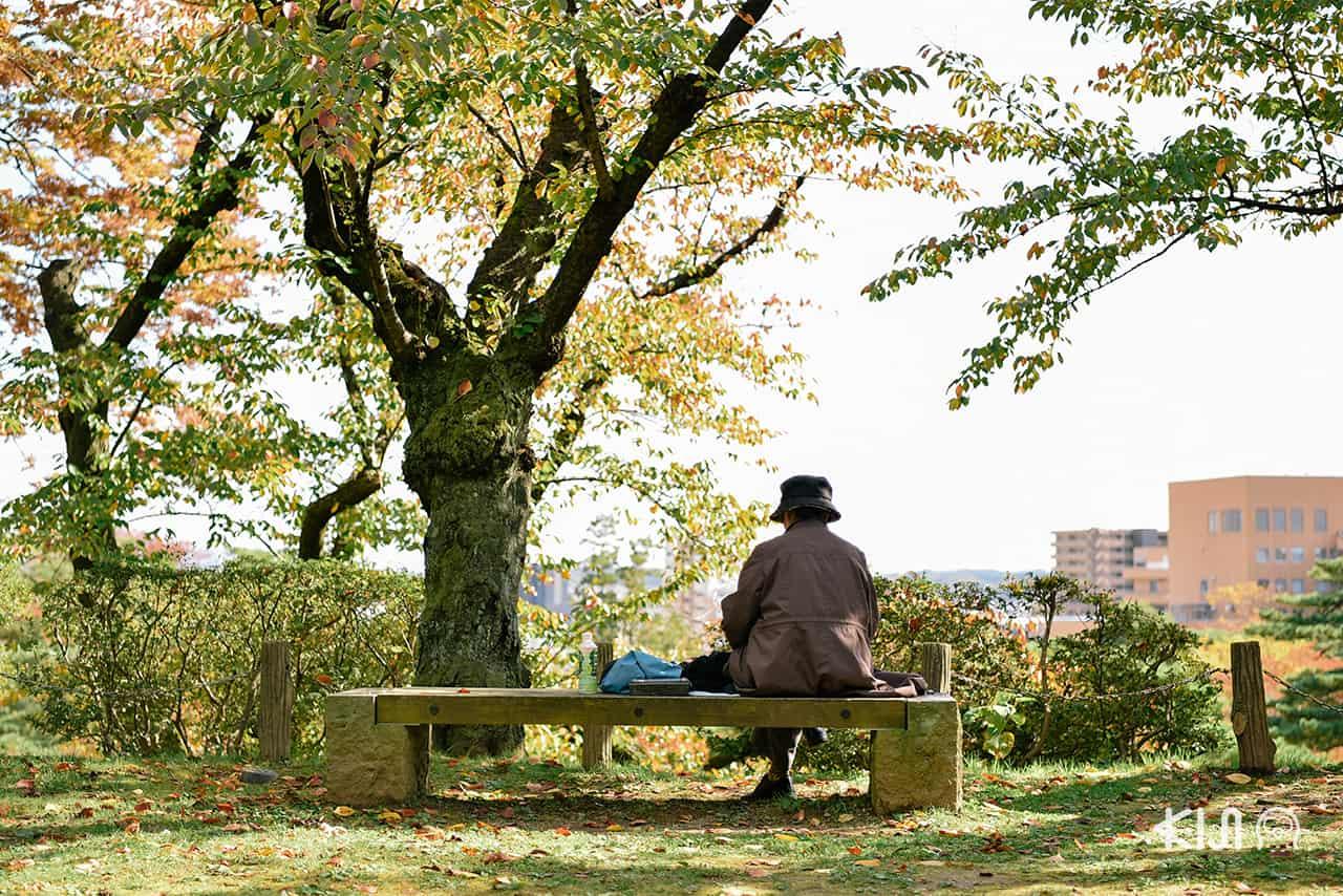 บรรยากาศสุดชิลล์ภายในสวน Senshu ของเมือง อาคิตะ
