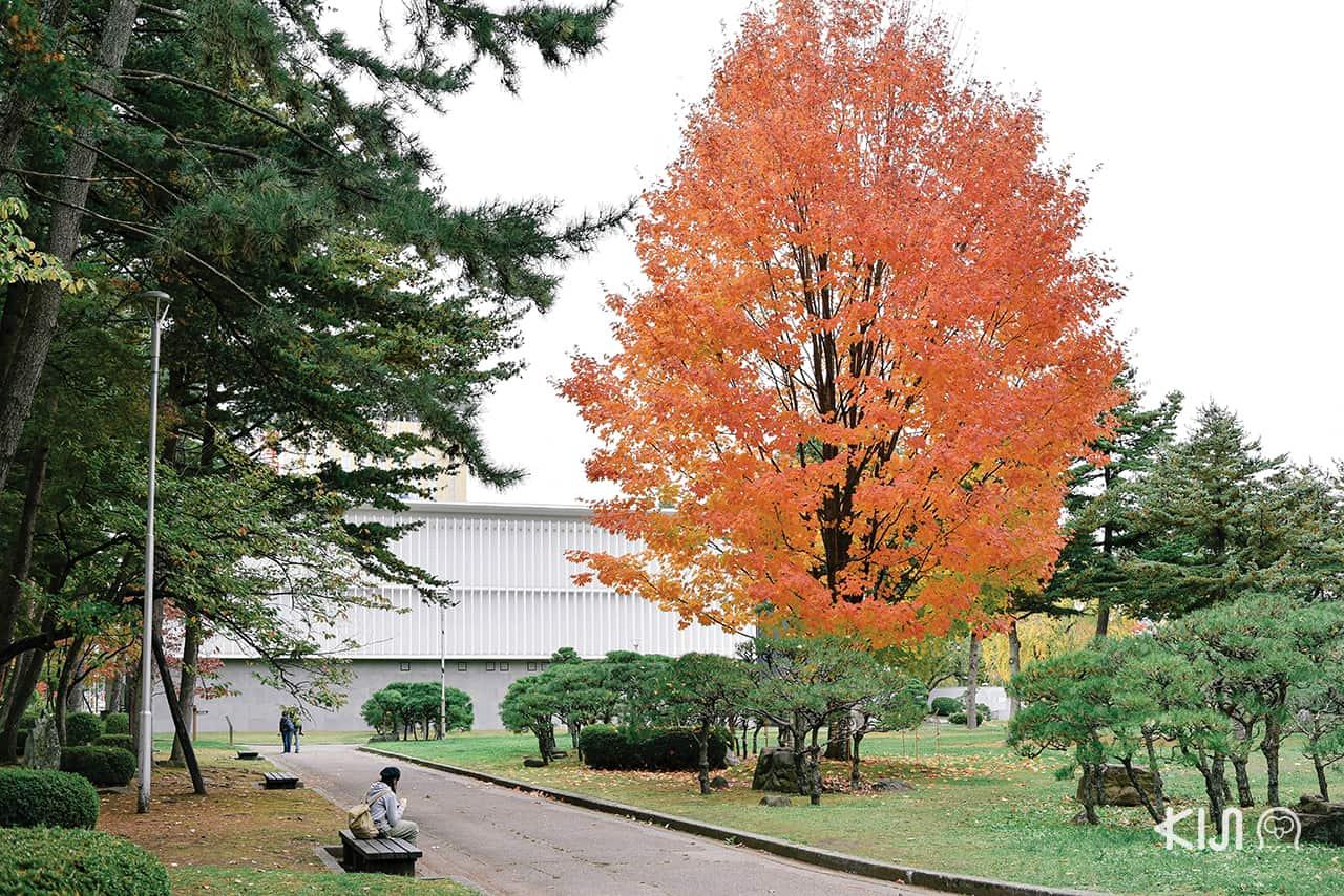 บรรยากาศสุดร่มรื่นที่ Morioka Castle Site Park