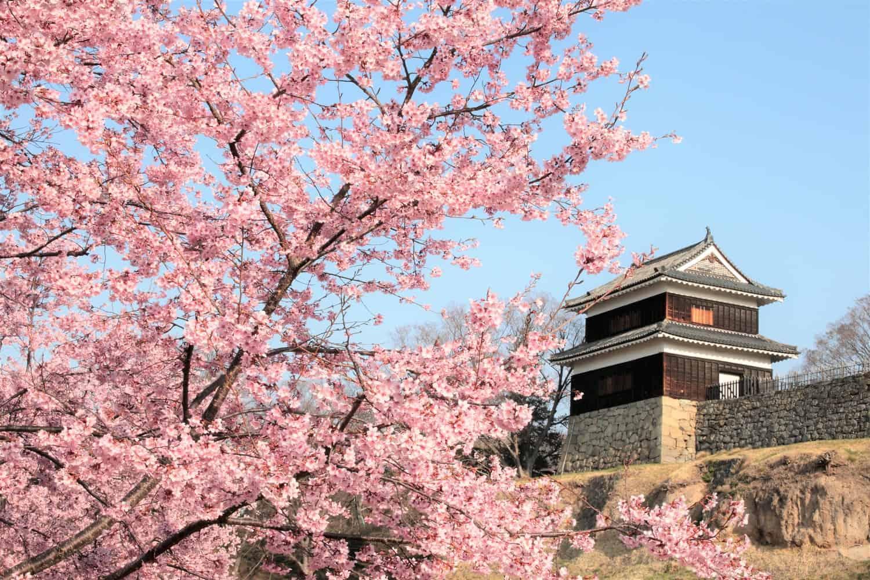 ปราสาทอุเอดะ (Ueda Castle) ปราสาทญี่ปุ่น ซึ่งทุกคนรู้จักในฐานะสนามรบหลายครั้ง ตั้งอยู่ที่จ.นากาโน่