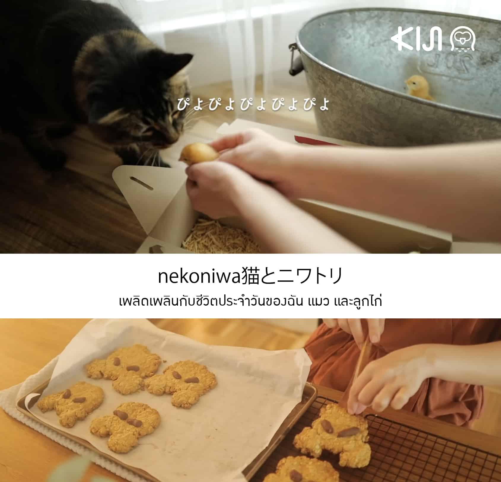 ยูทูปเบอร์ญี่ปุ่น ที่จะชวนคุณเพลิดเพลินไปกับชีวิตประจำวันของฉัน แมว และลูกไก่