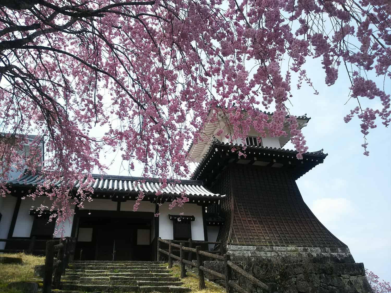 ปราสาทอิวามุระ Iwamura Castle เอนะ กิฟุ