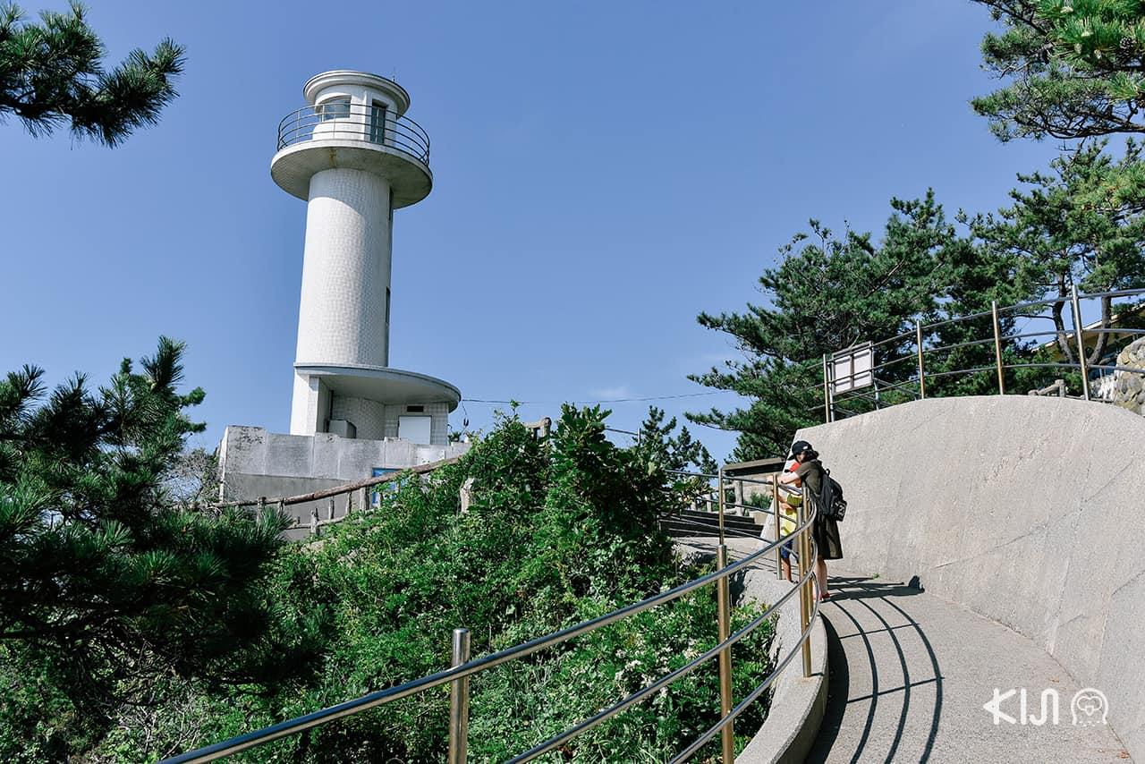 ประภาคารอันโดดเด่น สุดยอดจุดชมวิวบน เกาะซาโดะ