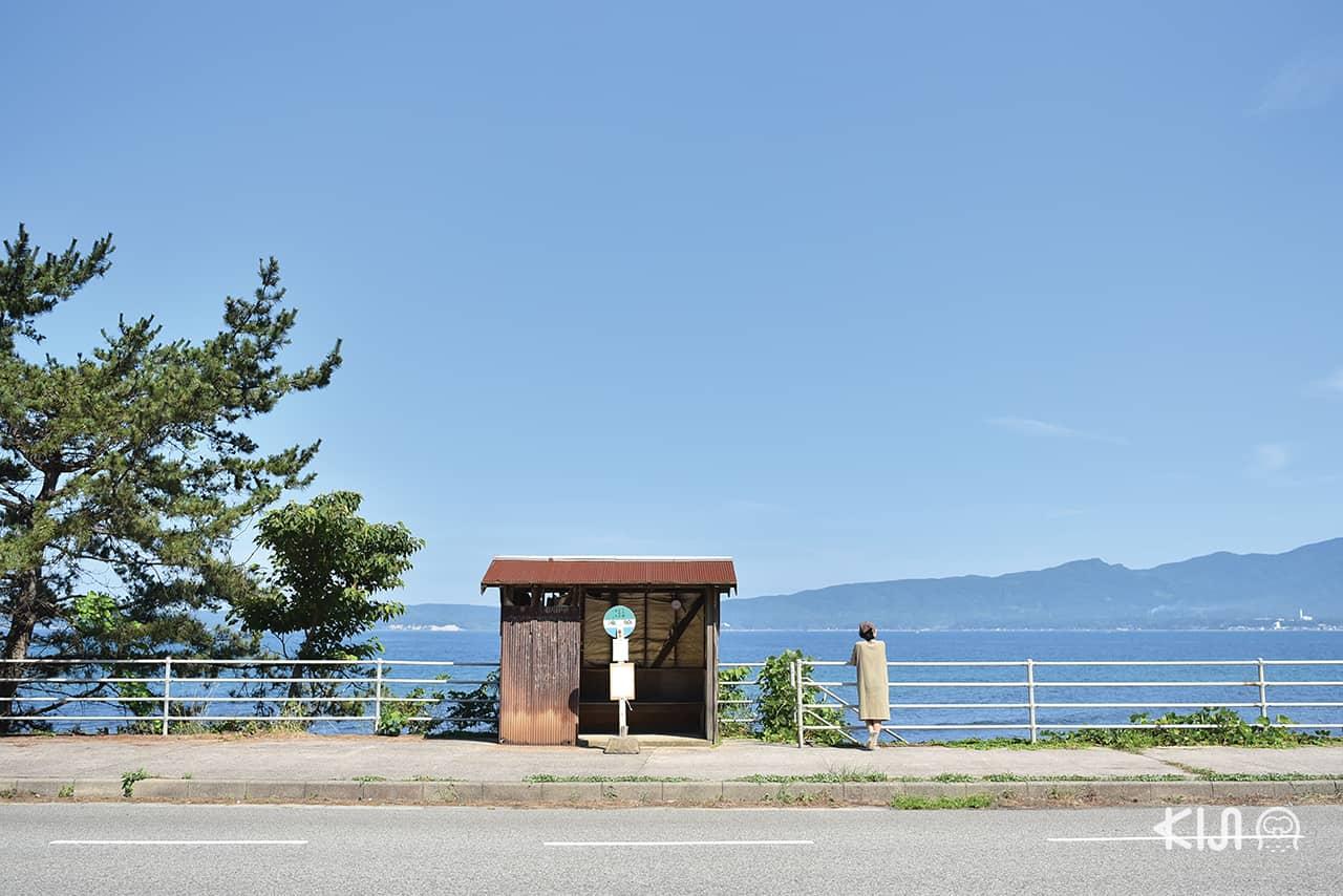 ป้ายรถบัสสุดมินิมอลที่ เกาะซาโดะ (Sado Island)