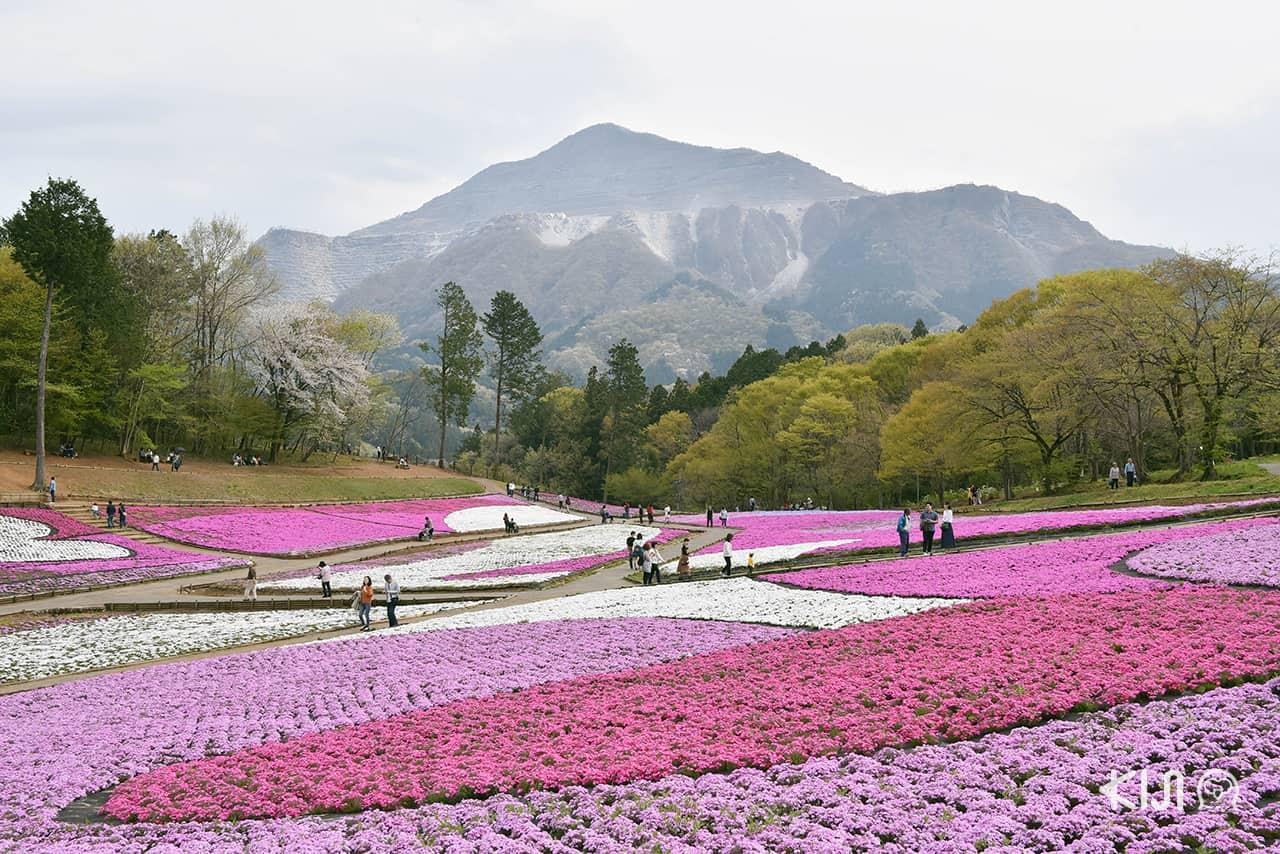 ที่เที่ยวไม่ไกลโตเกียว : จิจิบุ จ.ไซตามะ