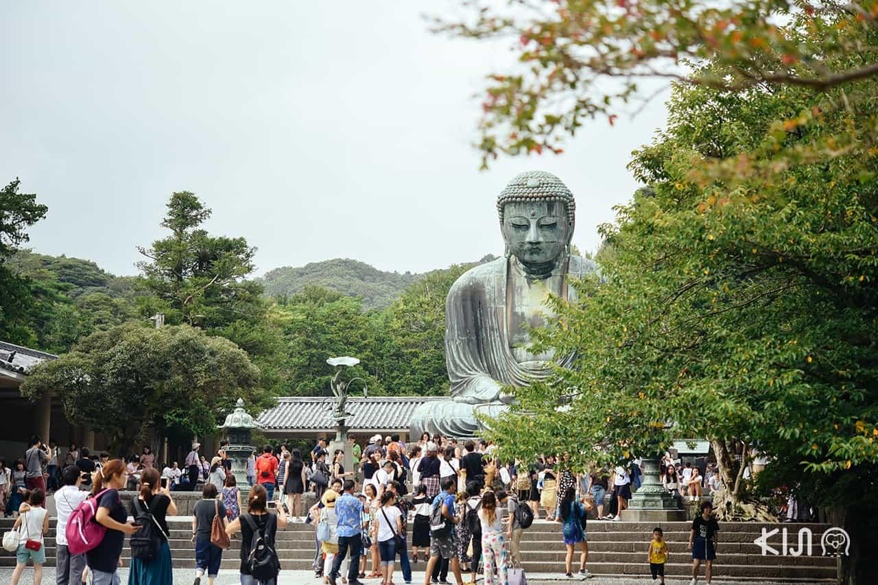 ที่เที่ยวไม่ไกลโตเกียว : พระใหญ่ไดบุทสึ (Daibutsu) ที่วัด Kotoku-in Temple