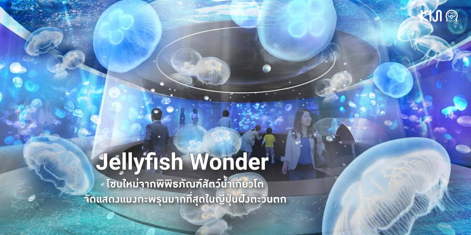 Jelly Wonder โซนแมงกะพรุนใหม่จาก Kyoto Aquarium