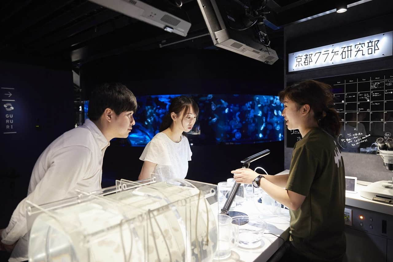 แผนกวิจัยแมงกะพรุนเกียวโตที่อยู่ภายใน Kyoto Aquarium