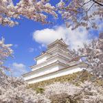 Tsuruga Castle Sakura (©Fukushima Prefecture)