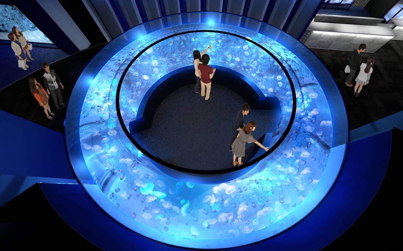 GURURI อุโมงค์โค้งที่มีแมงกะพรุนพระจันทร์มากถึง 1,500 ชีวิต ภายใน Kyoto Aquarium