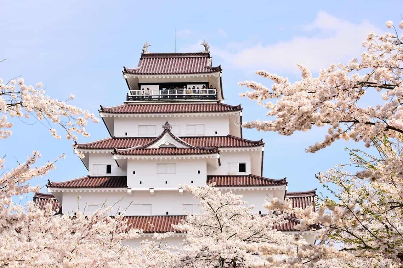 ชมซากุระสวยๆ ที่ปราสาทสึรุกะ (Tsuruga Castle)