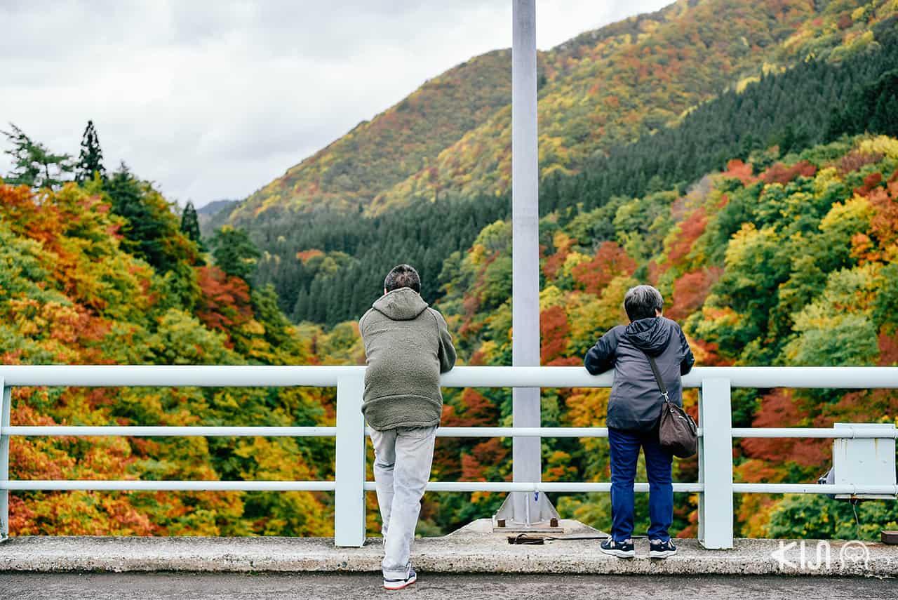 ชมวิวหุบเขาโอยาสุ (Oyasu Valley) บนสะพานแดงคาวารายุ