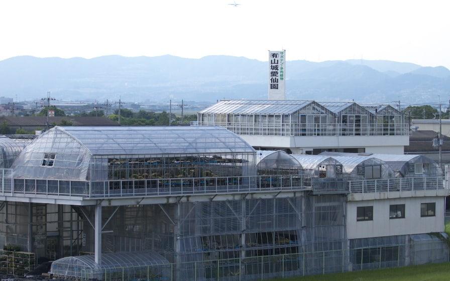 แคคตัสในญี่ปุ่น : ไอเซ็นเอ็น (Aisen-en) โอซาก้า