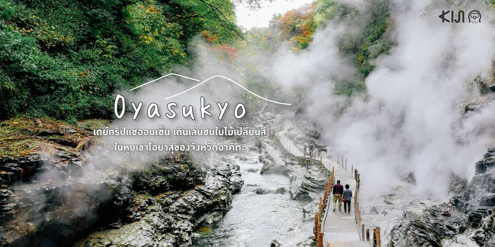 เที่ยวโอยาสุ (Oyasukyo) หุบเขาโอยาสุ อาคิตะ