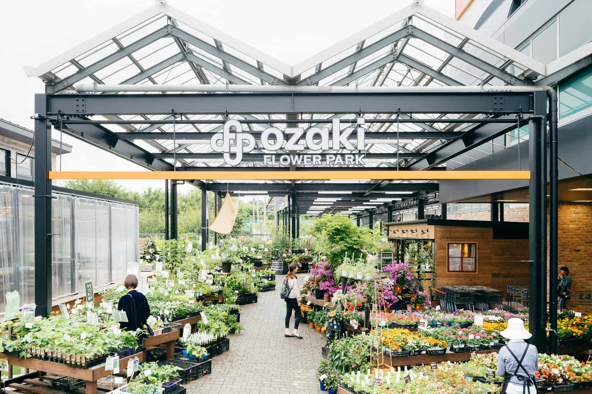 แคคตัสในญี่ปุ่น : โอซากิ ฟลาวเวอร์ พาร์ค (Ozaki Flower Park) โตเกียว