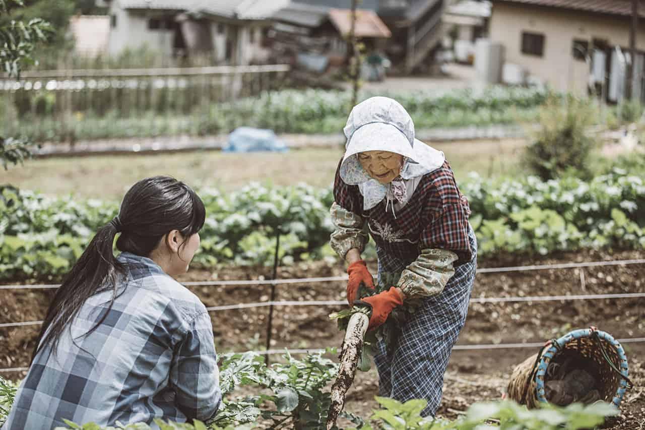 NIPPONIA Kosuge Village สามารถเพลิดเพลินกับการทำอาหารท้องถิ่นได้