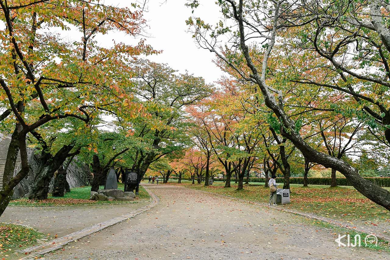 ที่เที่ยวตามเส้นทางของรถไฟ SL Ginga - Morioka Castle Site Park