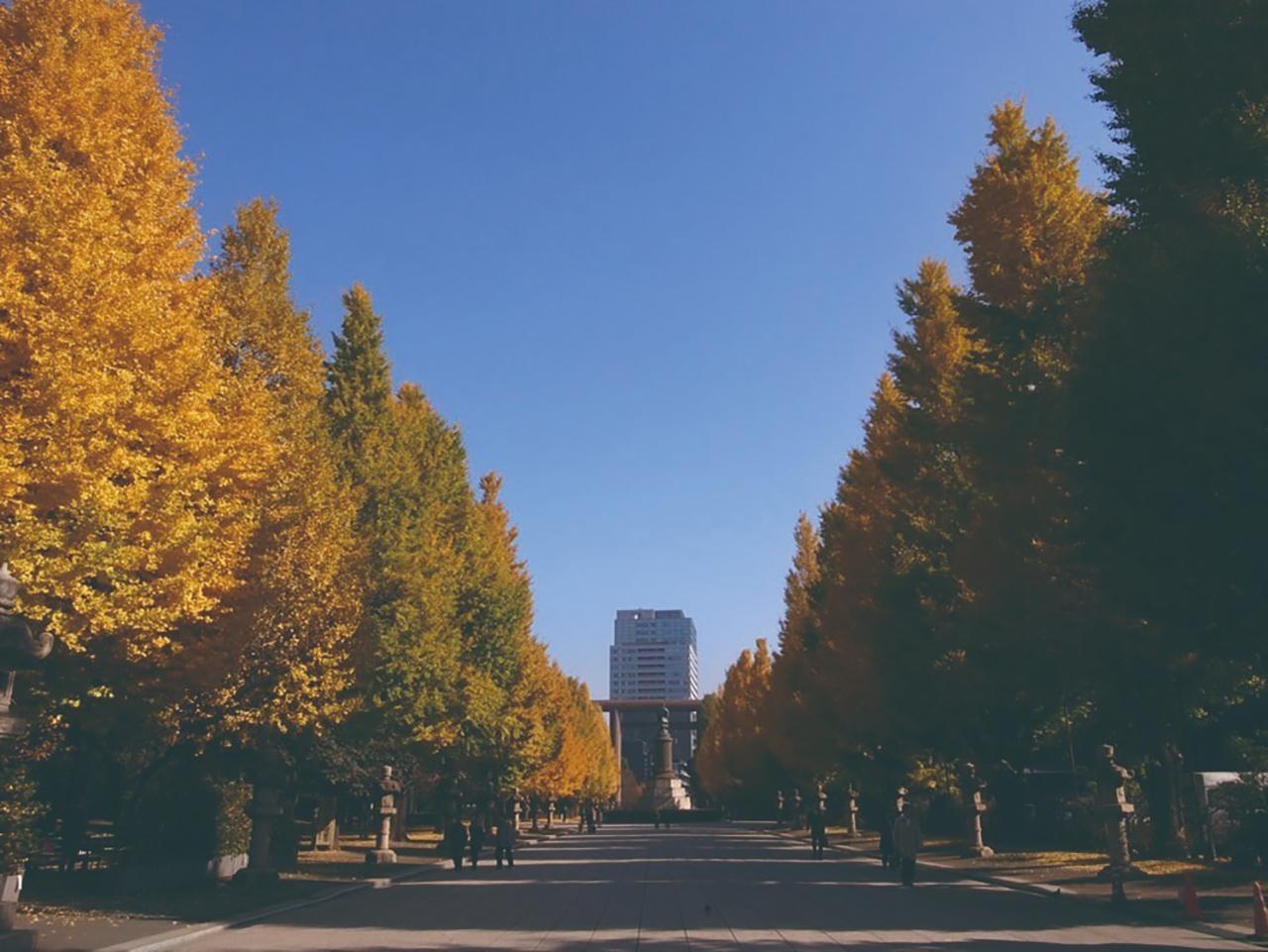 ศาลเจ้ายาสุกุนิ (Yasukuni Shrine), โตเกียว
