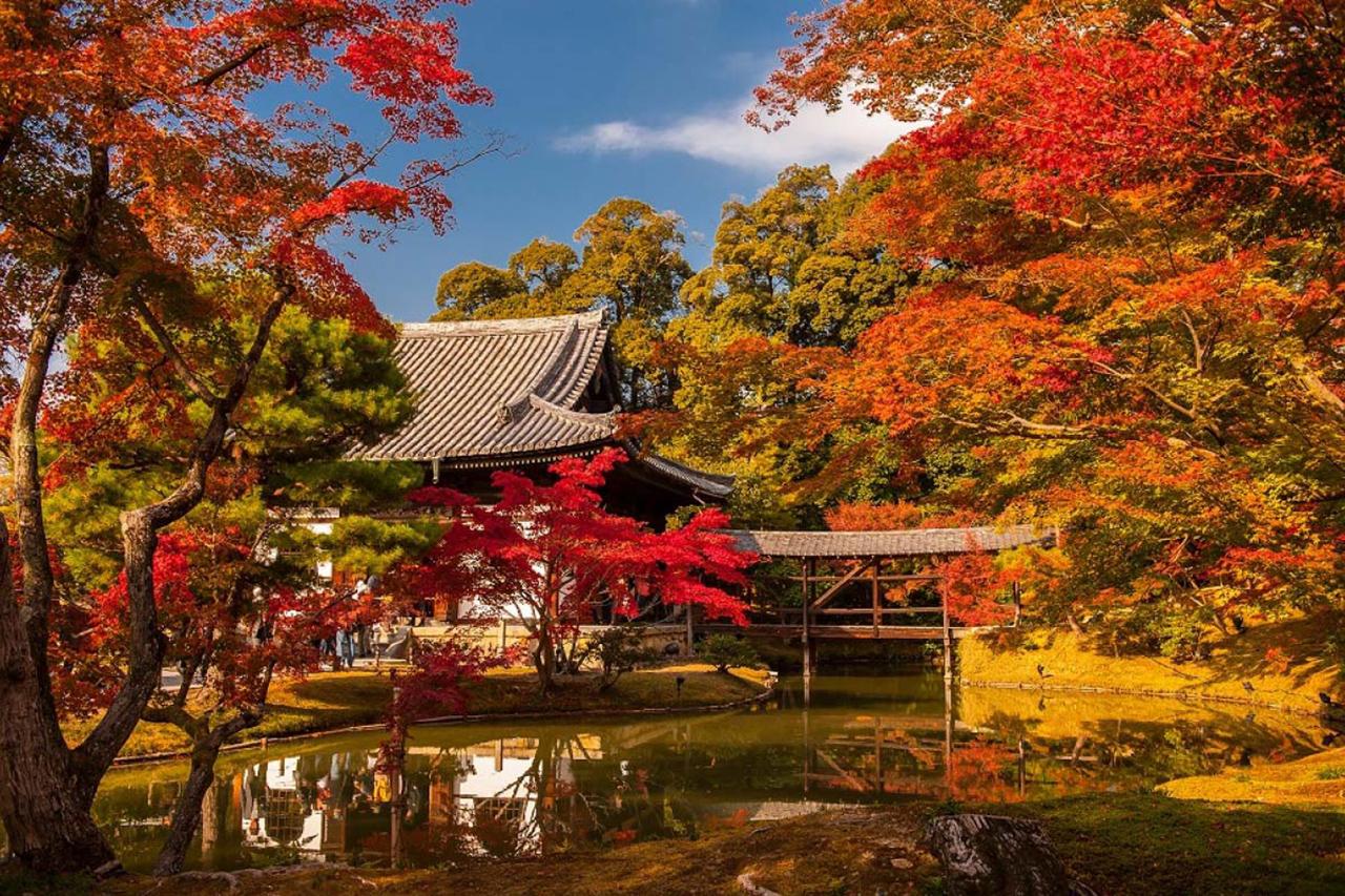 สวนธรรมชาติของวัดโคไดจิ จุดชมใบไม้เปลี่ยนสี แห่ง เกียวโต