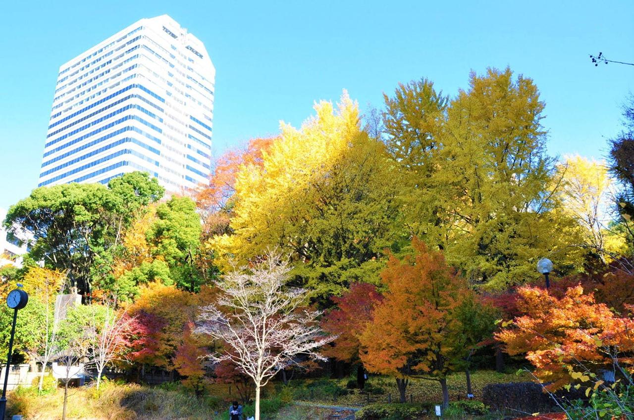 สวนชิมิสึดานิ, โตเกียว