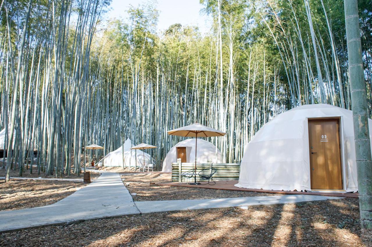 บรรยากาศของ THE BAMBOO FOREST