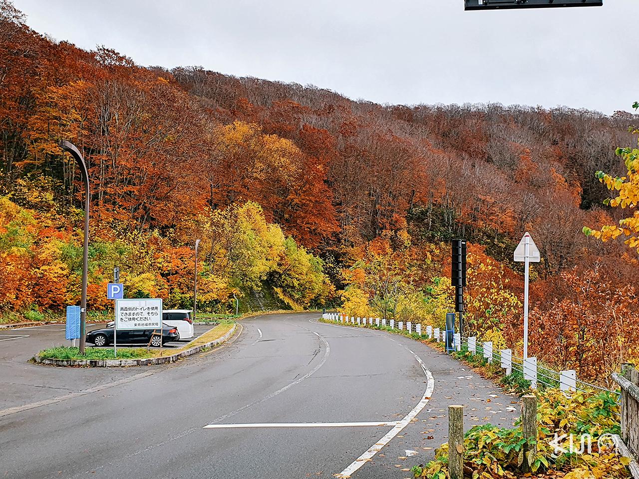 ตะลุยเที่ยว โทโฮคุ ในฤดู ใบไม้เปลี่ยนสี