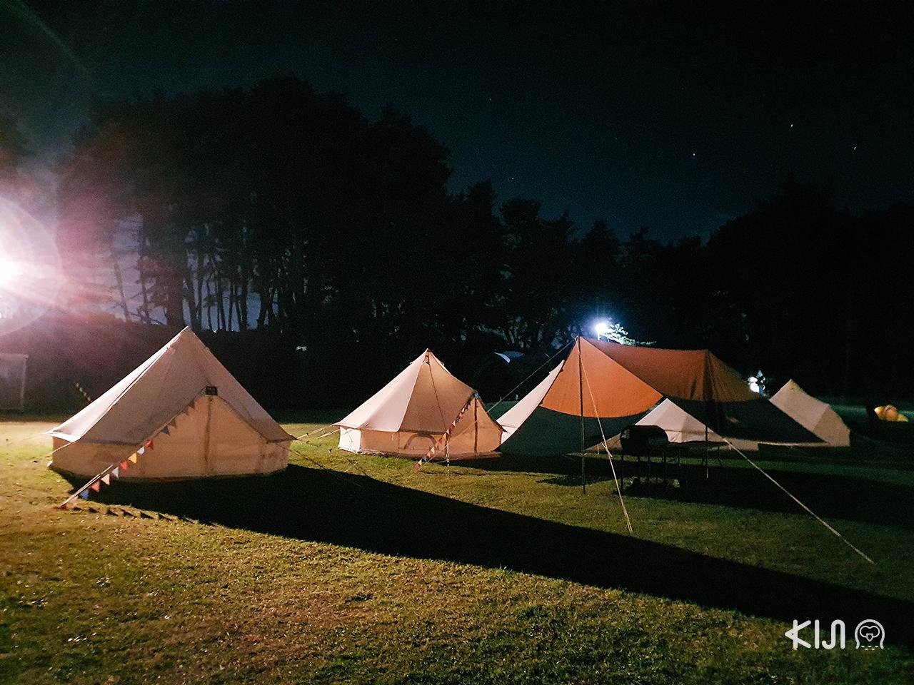 BBQ in Tanesashikaigan Camping Ground จ. อาโอโมริ, โทโฮคุ