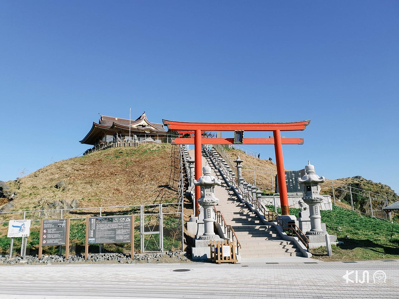 ทริปฤดู ใบไม้เปลี่ยนสี โทโฮคุ : ศาลเจ้าคาบุชิมะ (Kabushima Shrine)