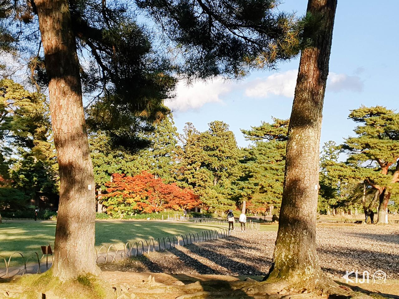 Motsuji Temple, โทโฮคุ กับ บรรยากาศ ใบไม้เปลี่ยนสี