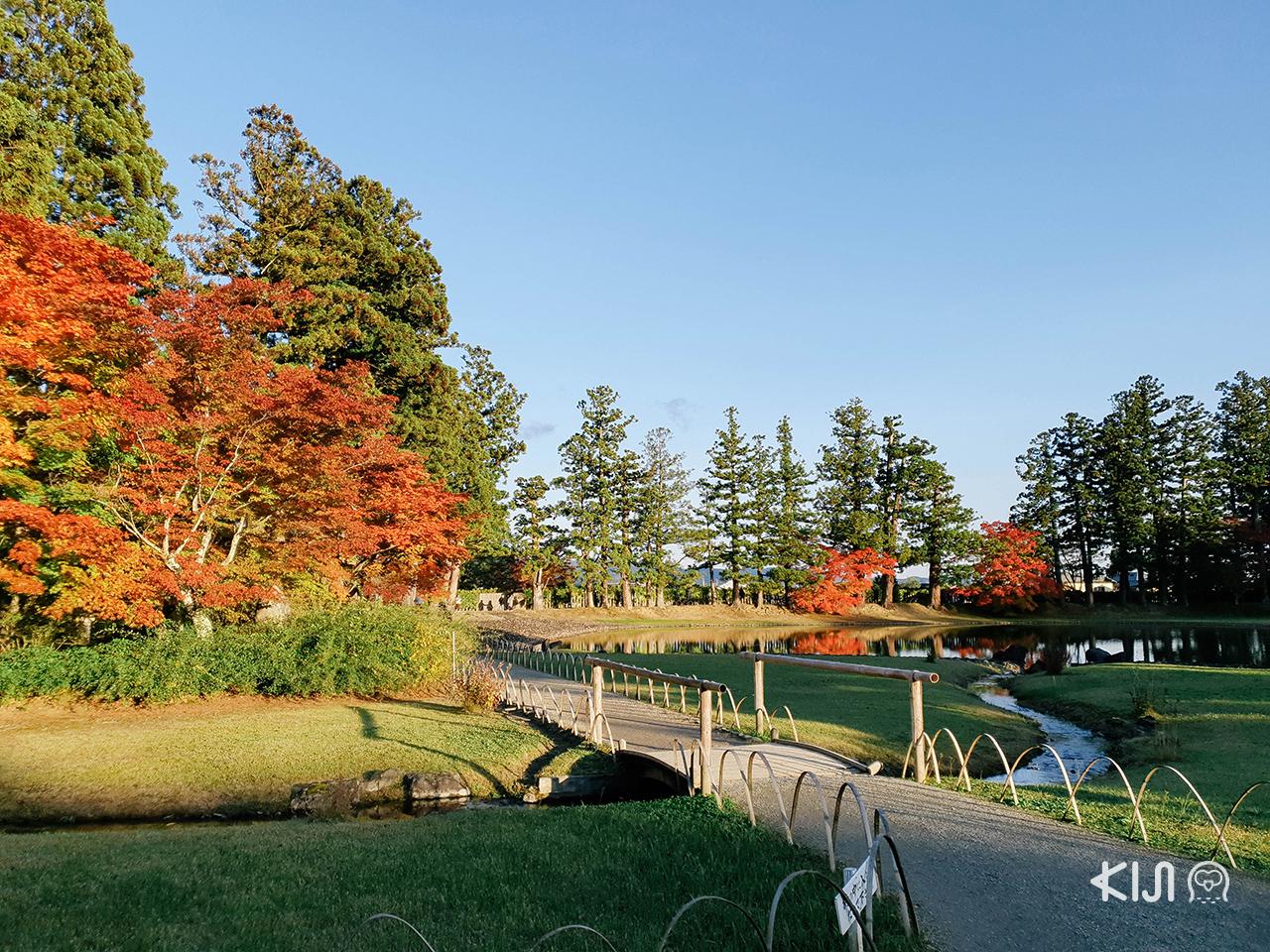 บรรยากาศ ใบไม้เปลี่ยนสี ใน โทโฮคุ : วัดโมสึจิ (Motsuji Temple)