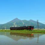 FruiTeaFukushima1
