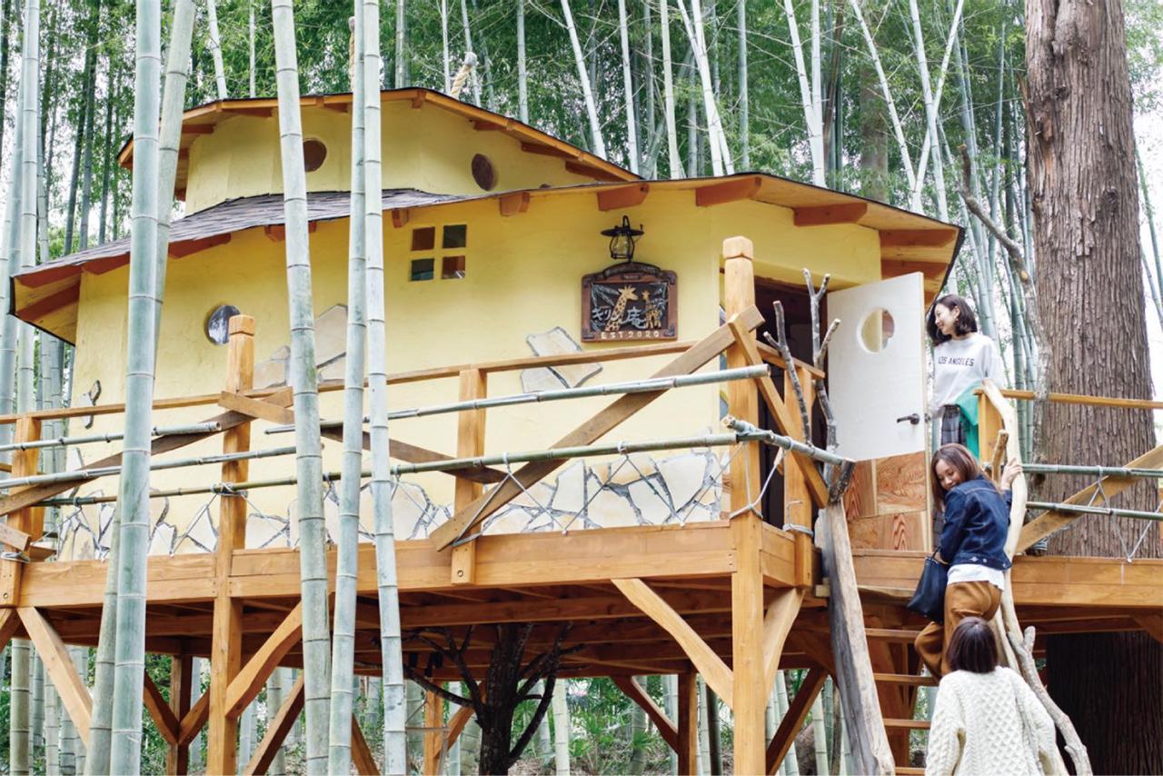 ตัวอย่างที่พักของ THE BAMBOO FOREST