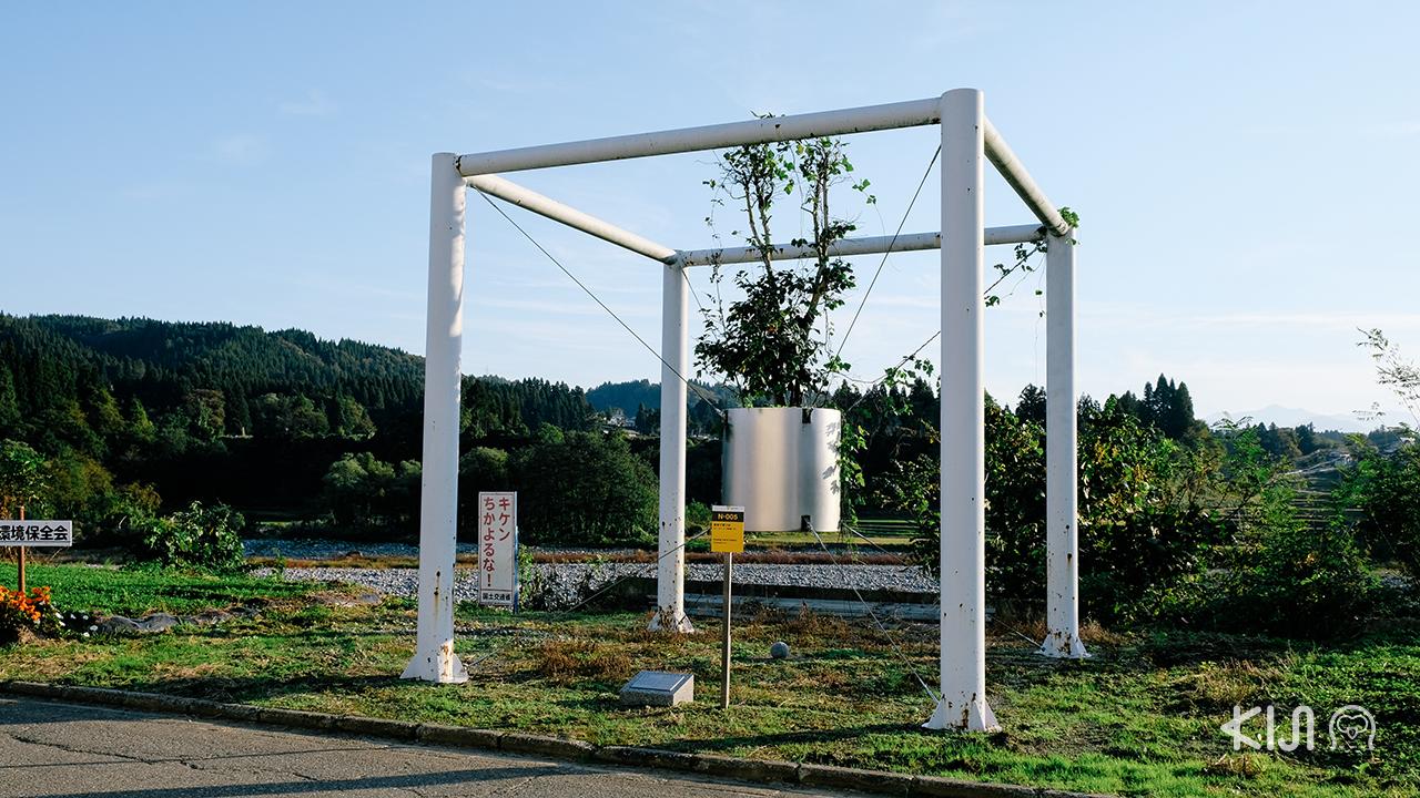 ผลงานศิลปะ Growing Tree in Tsumati โดยศิลปินชาวเกาหลีที่สามารถหาชมได้แค่ที่ โทคามาจิ แห่งนี้เท่านั้น