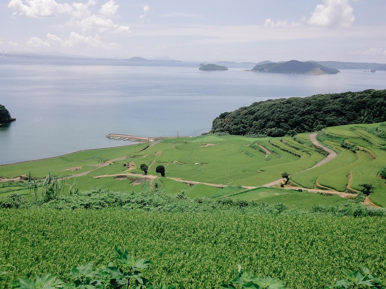 สถานที่เที่ยวในจ.นางาซากิ (Nagasaki) และ ซากะ (Saga) - Doya Tanada / Matsu-ura Town