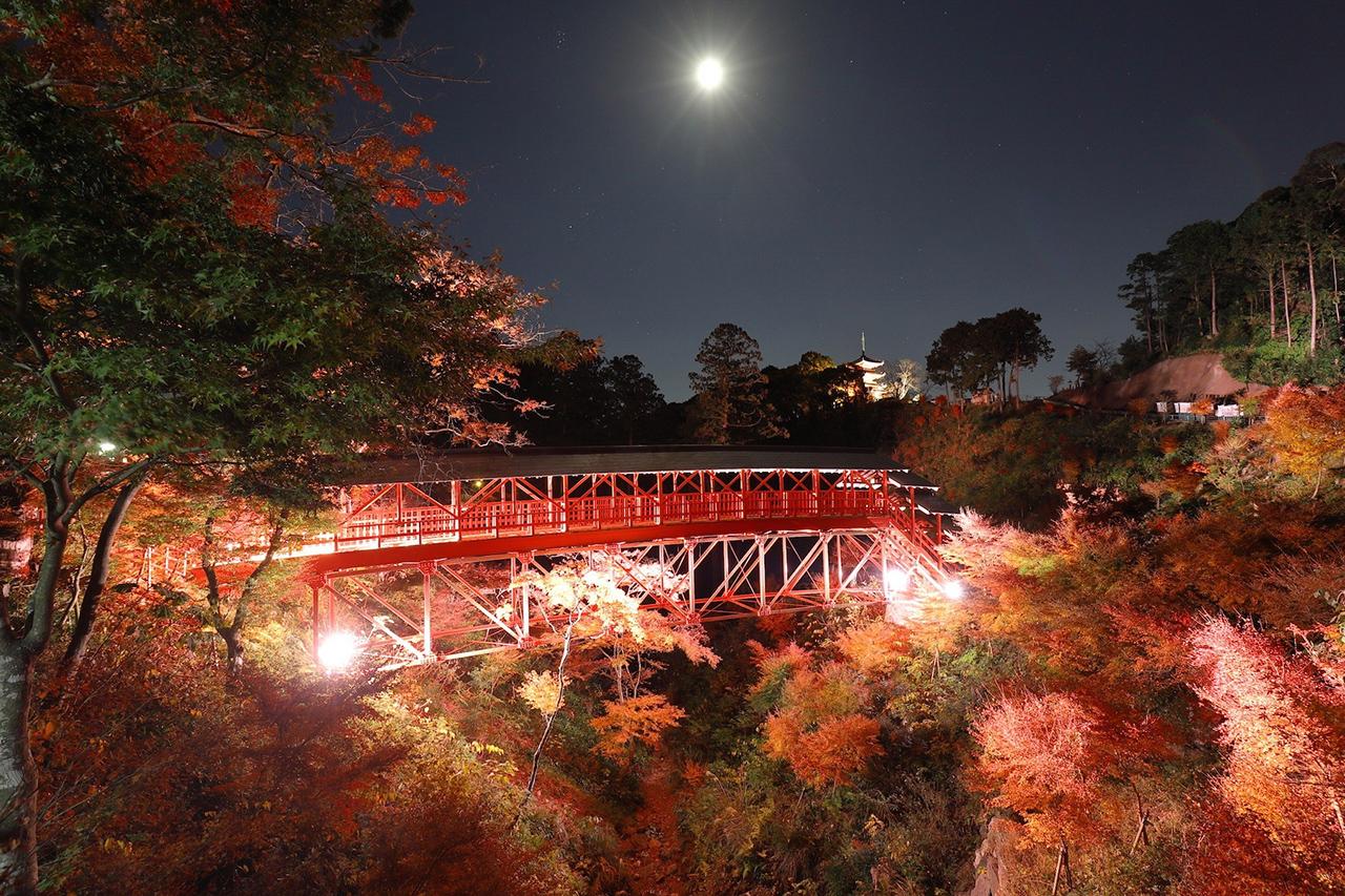 วิวตอนกลางคืนที่สวยไม่แพ้กันของวัดโฮโคจิ, Hamamatsu