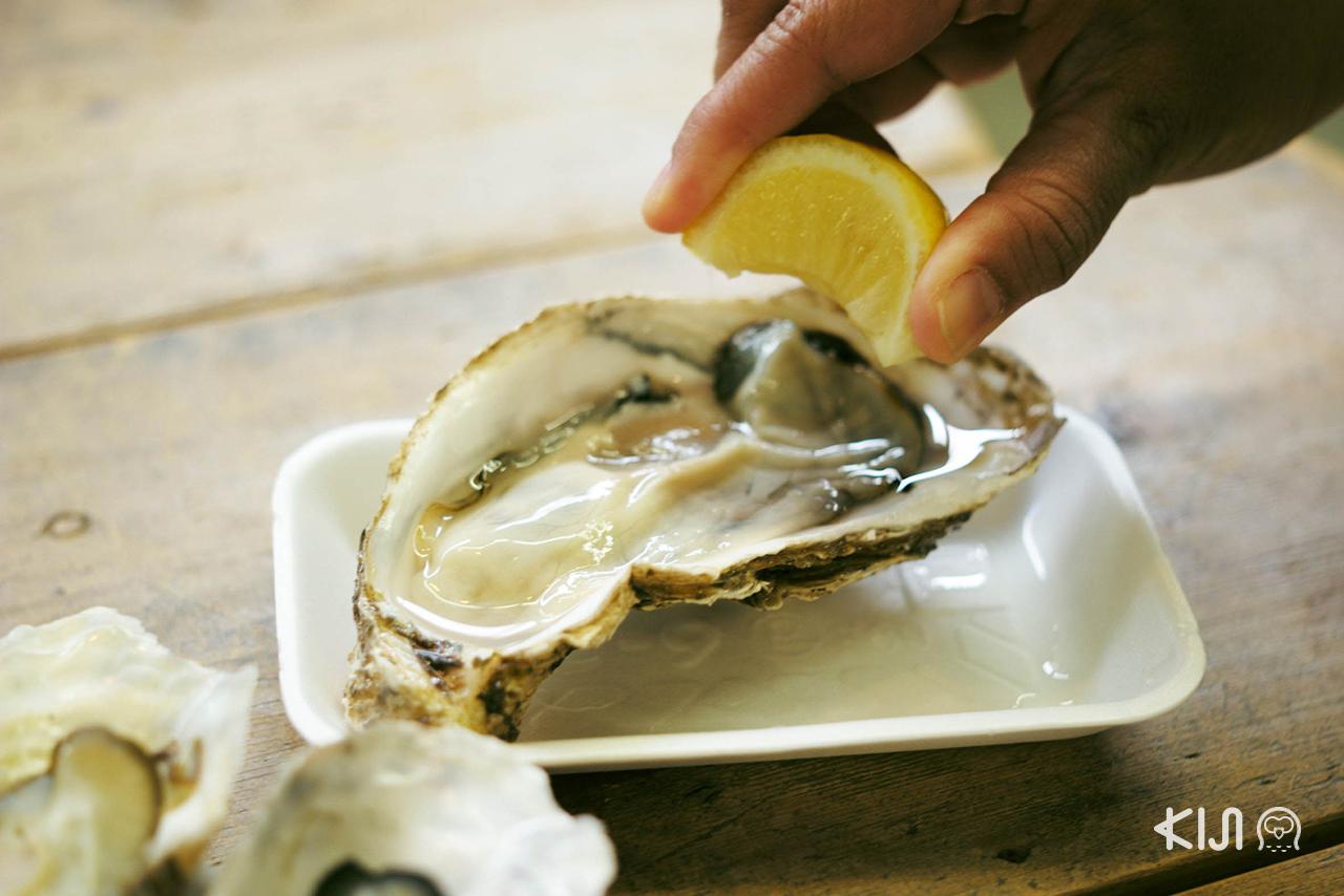 หอยนางรมย่า อาหารขึ้นชื่อของมัตสึชิมะ (Matsushima)