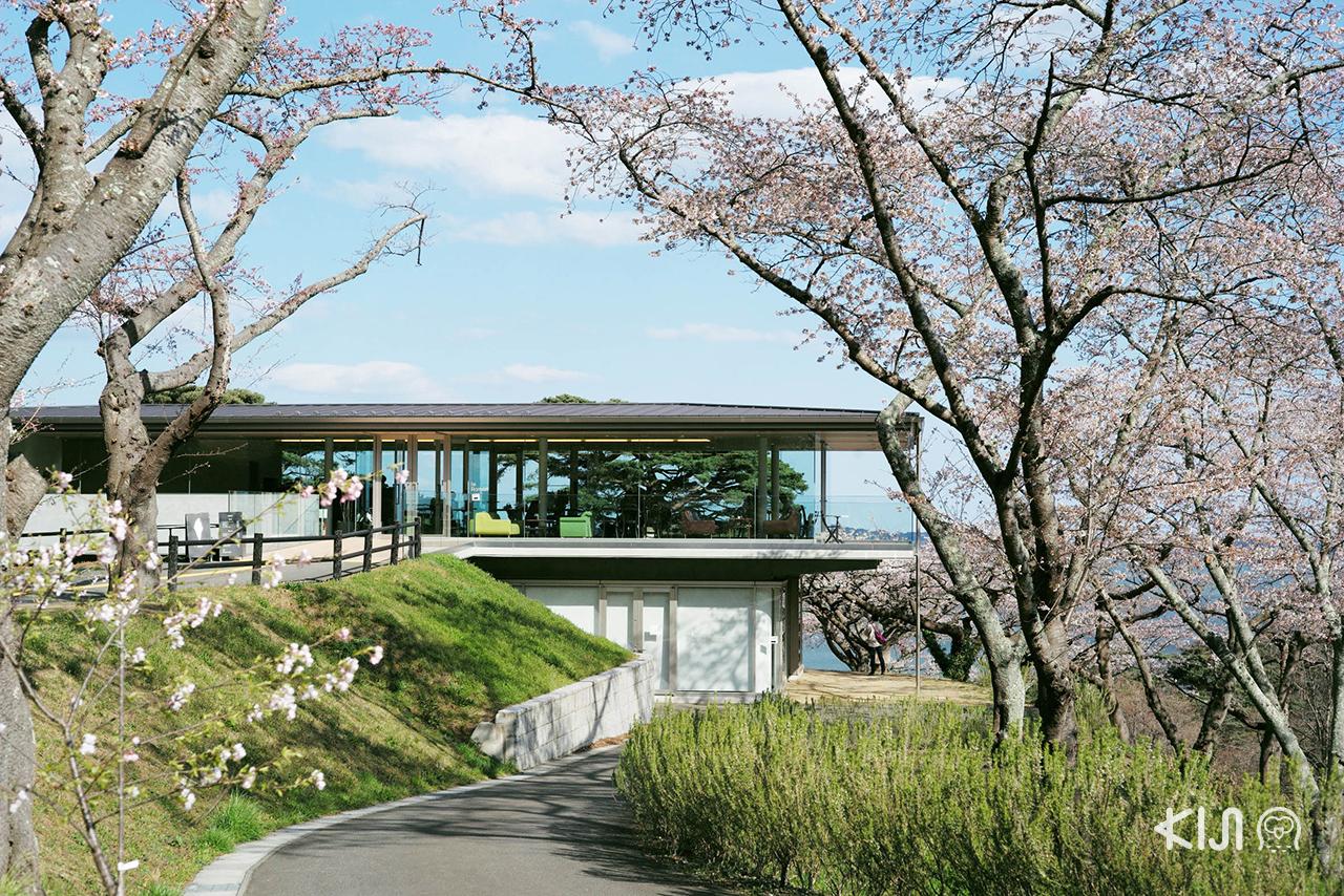คาเฟ่ที่มัตสึชิมะ (Matsushima) - Café le Roman