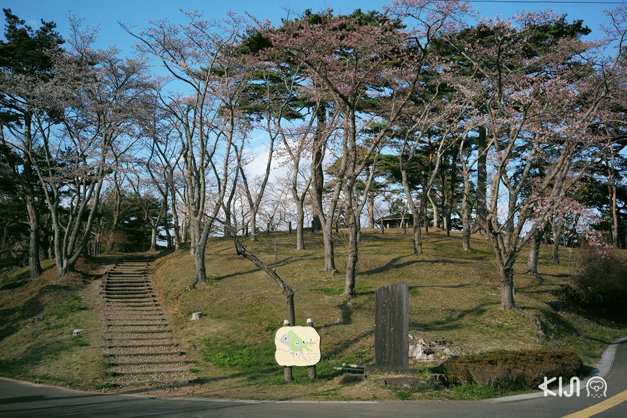 ที่เที่ยวมัตสึชิมะ (Matsushima) - Saigyo Modoshi no Matsu Park