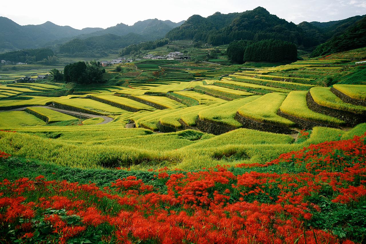 สถานที่เที่ยวในจ.นางาซากิ (Nagasaki) และ ซากะ (Saga) - Onigi Tanada