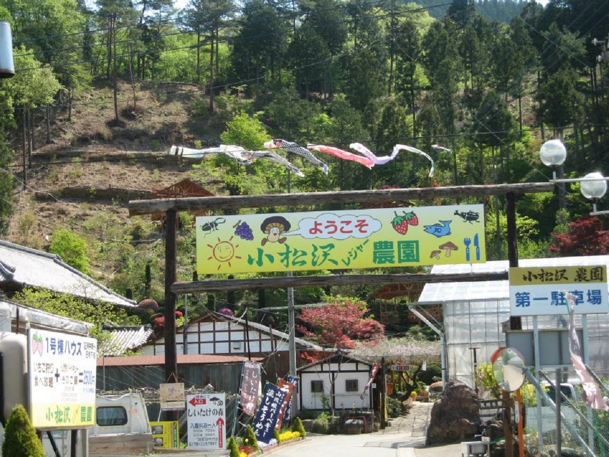สวนโคมัตสึซาวะ (Komatsuzawa Leisure Farm) สวนผลไม้ในจังหวัดไซตามะ