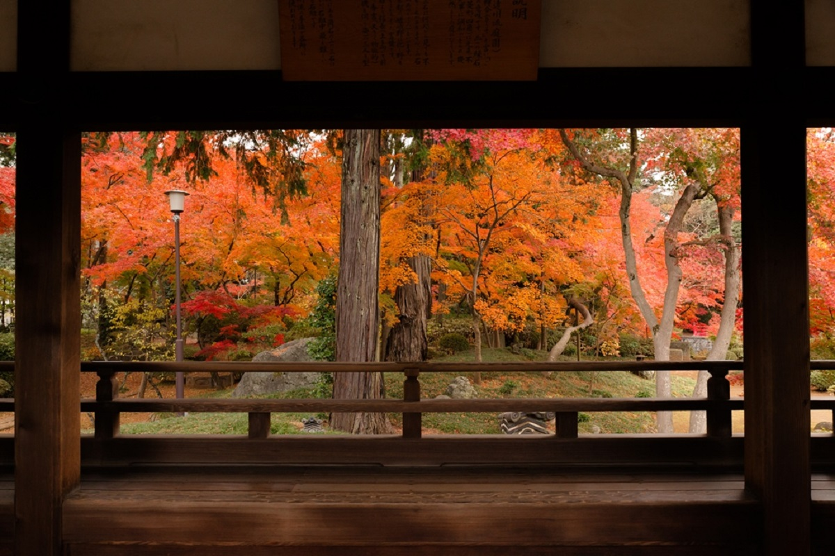 จุดชมใบไม้เปลี่ยนสีในจ.ไซตามะ (Saitama) ฤดูใบไม้ร่วง - วัดคิตะอิน (Kita-in Temple)