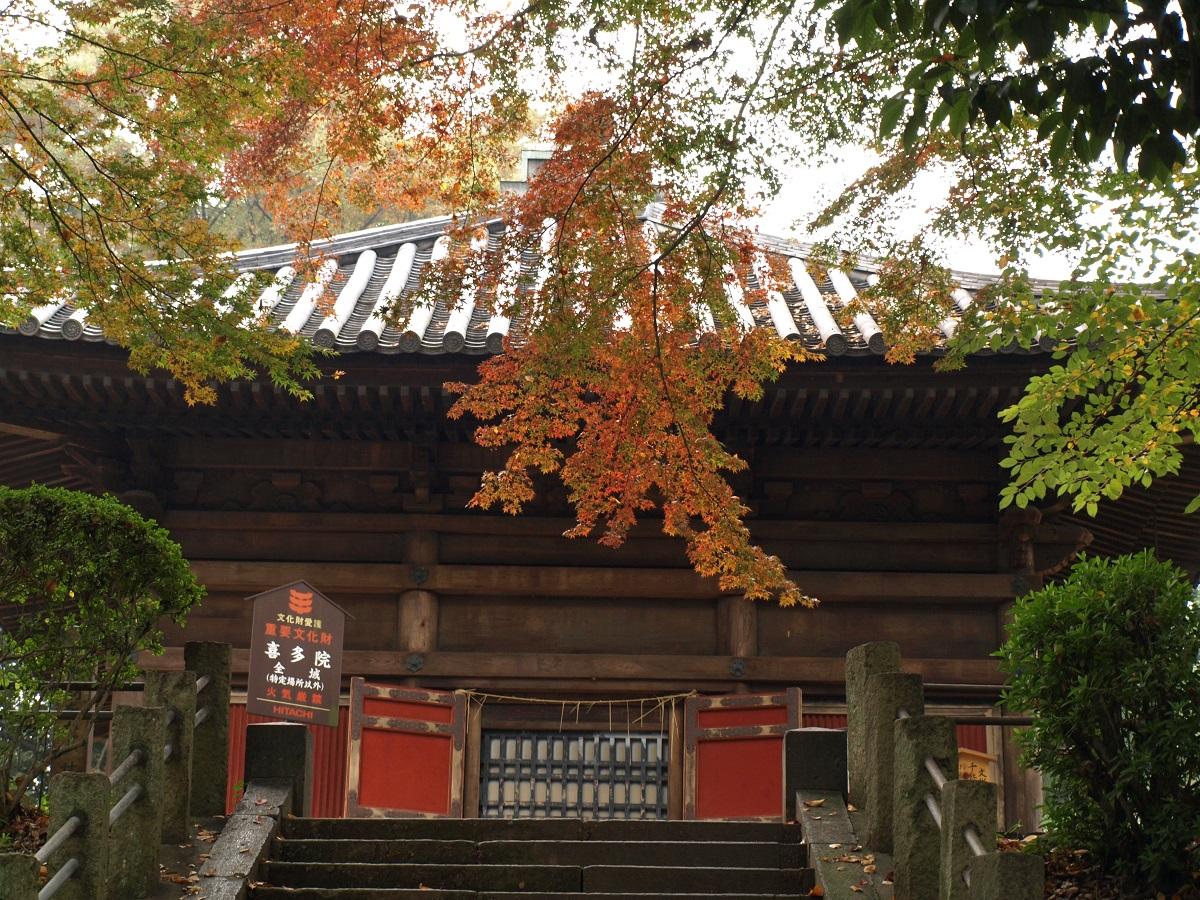 บรรยากาศใน ฤดูใบร่วง ที่ วัดคิตะอิน (Kita-in Temple) จ.ไซตามะ (Saitama)