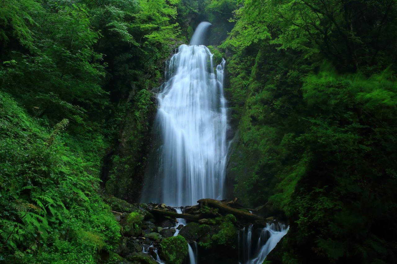 น้ำตกมิคาเอริ (Mikaeri Falls)